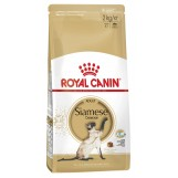 Royal Canin Siamese Adult, 10 кг.