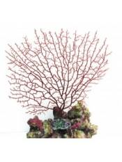 Мягкий коралл 27,5*25см, резина, пластик