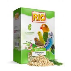 Травка для птиц RIO, 40 гр.