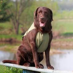 Охлаждающая попона для собак OSSO Fashion, 50 р-р