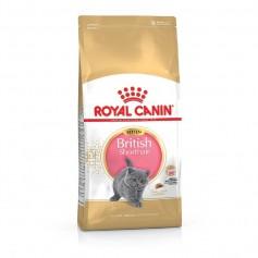 Royal Canin British Shorthair Kitten, 10 кг.