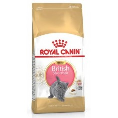 Royal Canin British Shorthair Kitten, 10 кг.