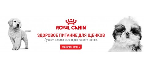РоялКанин